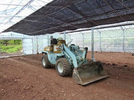カカオ栽培のための土壌づくり