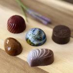 シッカリと甘いのに嫌味じゃない「ノリコショコラ」の新月ショコラをお取り寄せしました