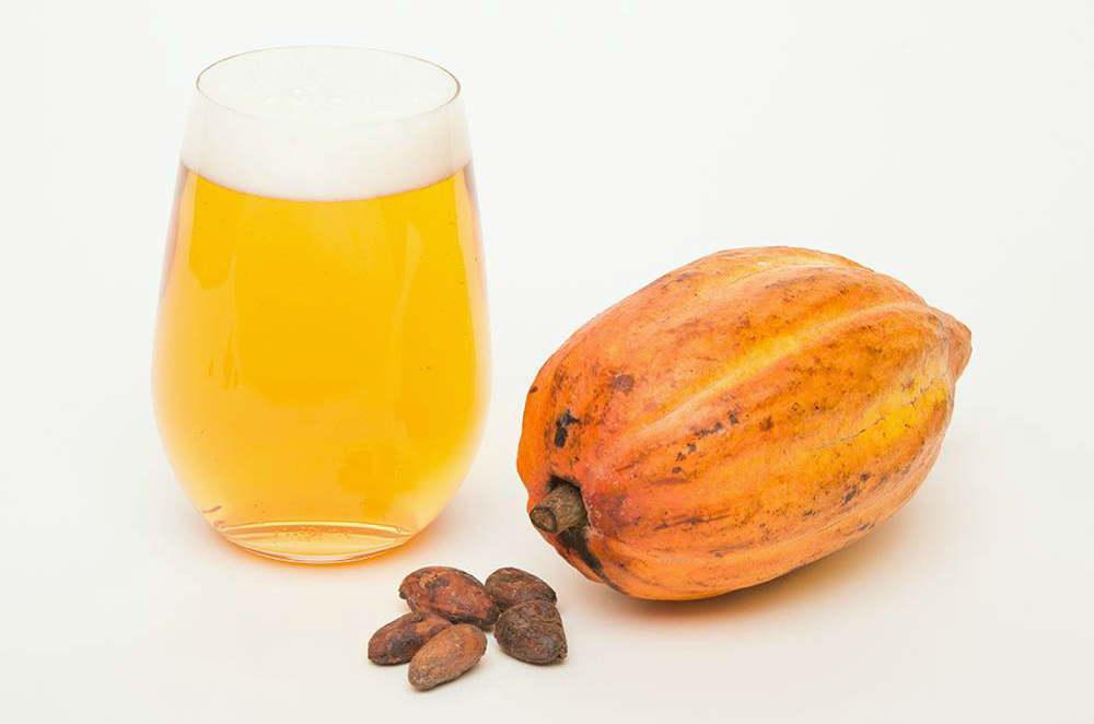 cacaoのビール Cacao Chili Amber