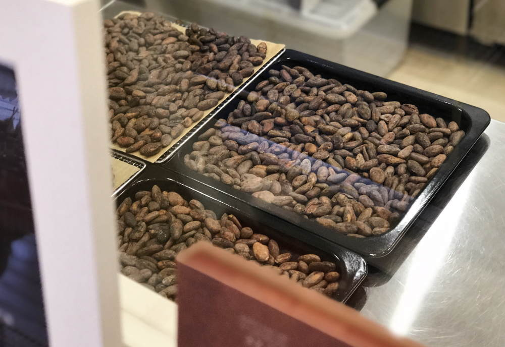 33.8° GOOD CACAO 工房の様子