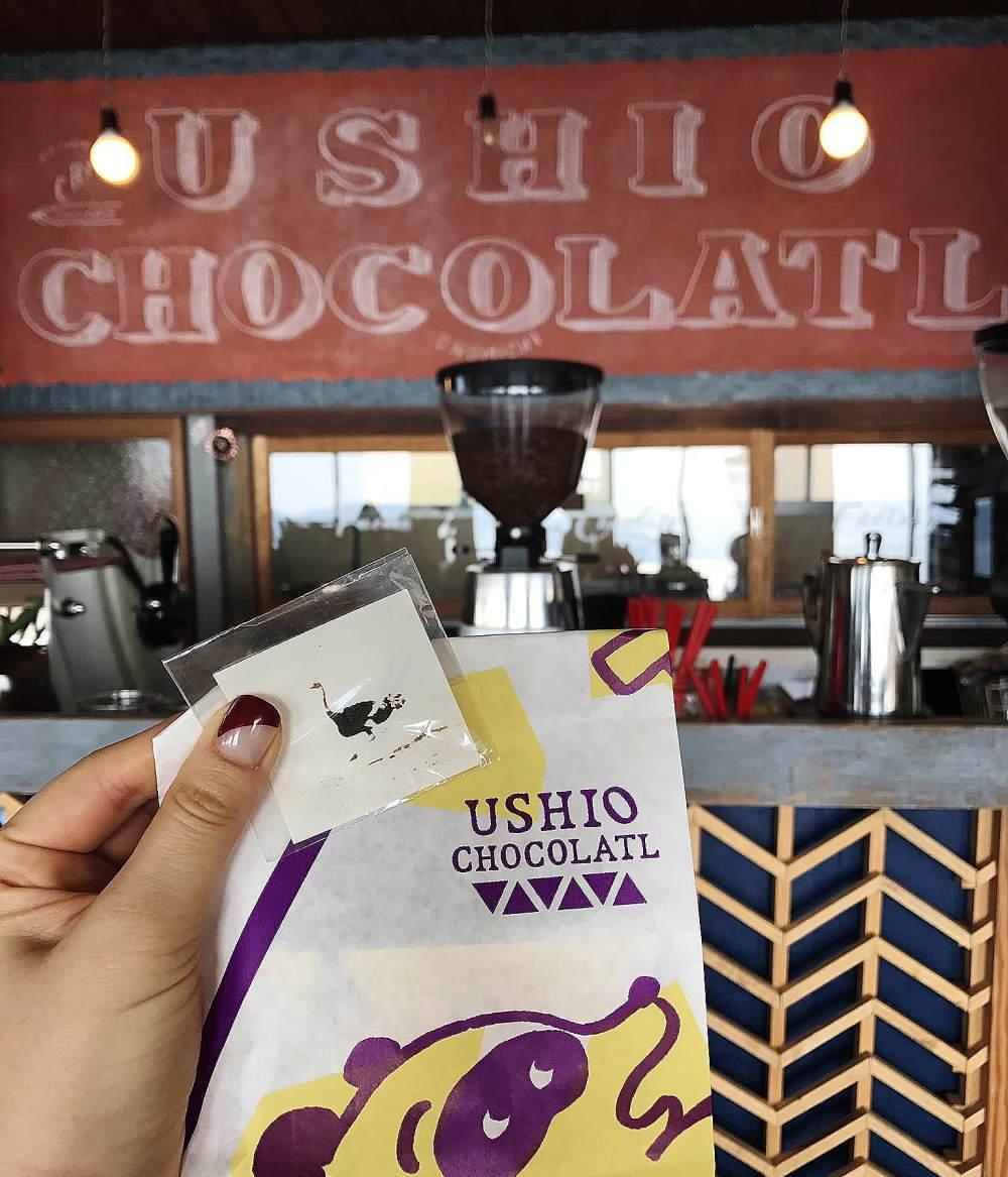 ウシオチョコラトルでお買い物してきました